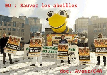 Abeilles et pesticides : les hésitations des pays européens