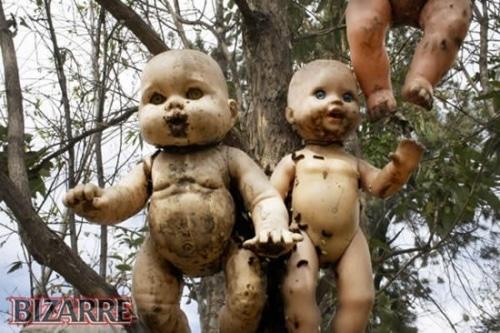 Mexique… La malédiction de l'île aux poupées…