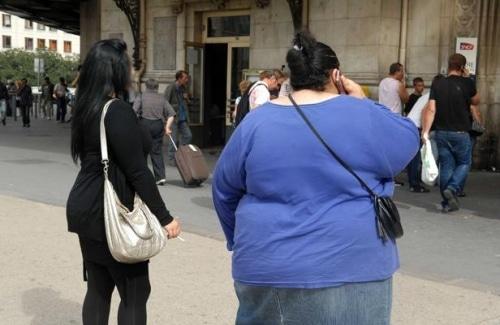 Le dysfonctionnement de la flore intestinale  accroit le risque d'obésité