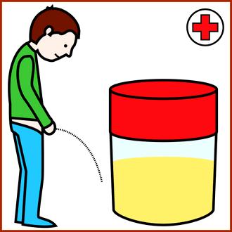 Produire de l'électricité avec de l'urine, le principe est au point !