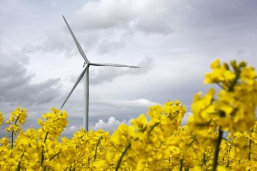 Les énergies renouvelables, une filière aux multiples enjeux