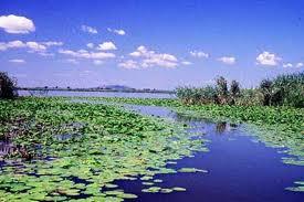 Le delta du Danube – un coin de paradis