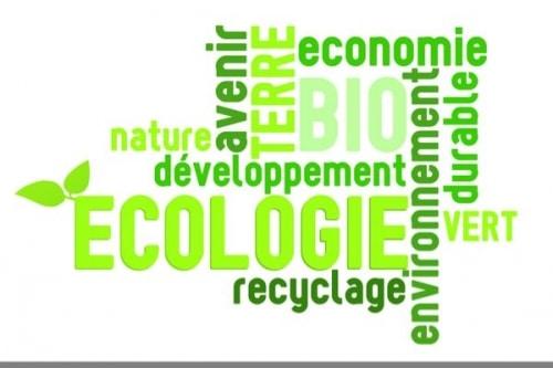 Comment  consommer durable avec plus d'efficacité  !