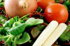 Végétalisme , pour qui , pourquoi ?