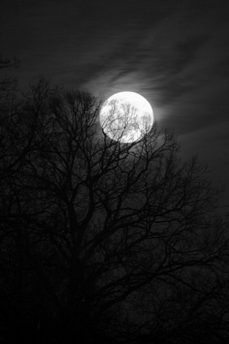 Les secrets de la nuit