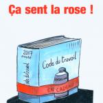 Charly mouche et fouette Macron et Ça sent la rose !