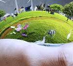 De l'écologie : billet d'humeur