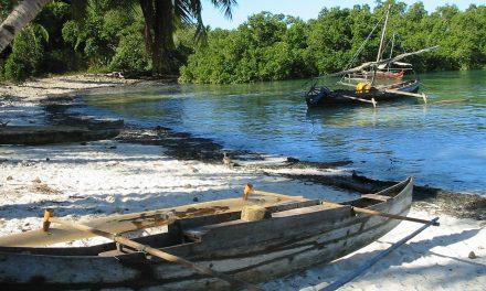 Voyager à Madagascar avec un visa électronique