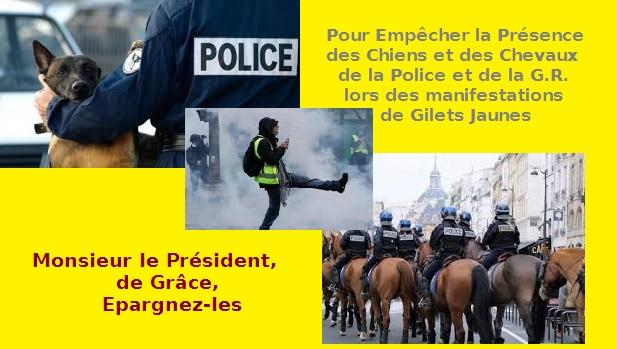 NE SACRIFIEZ PAS LES CHEVAUX ET LES CHIENS POLICIERS, LORS DES MANIFESTATIONS GILETS JAUNES