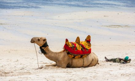 Vacances au Moyen-Orient
