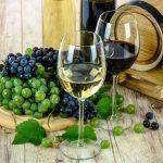 Comment choisir un bon vin : nos conseils
